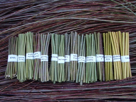 Willow Cuttings from Dunbar Gardens, used with permission